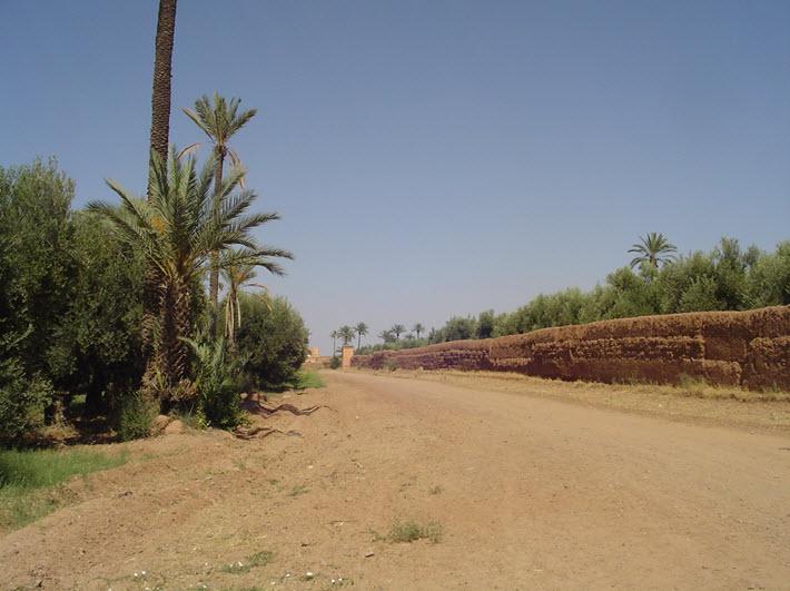 Dar El Hana