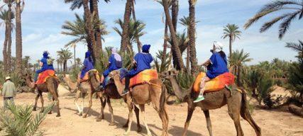 Que faire avec les enfants pour les vacances de février à Marrakech ? Notre sélection