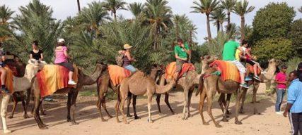 Que faire à Marrakech avec les enfants pour les vacances de printemps ? Notre guide