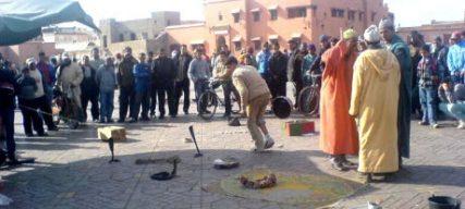 Que faire en septembre à Marrakech ? Notre guide