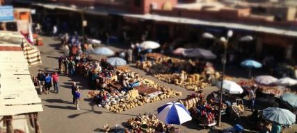 Les choses insolites à faire à Marrakech