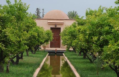 musee-de-la-palmeraie-a-marrakech